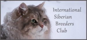 sibirisk katt international siberian breeders club